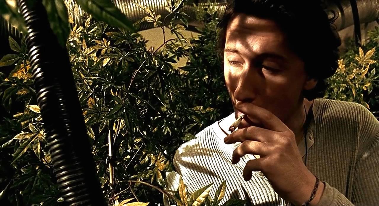 接过那根大麻烟之后...